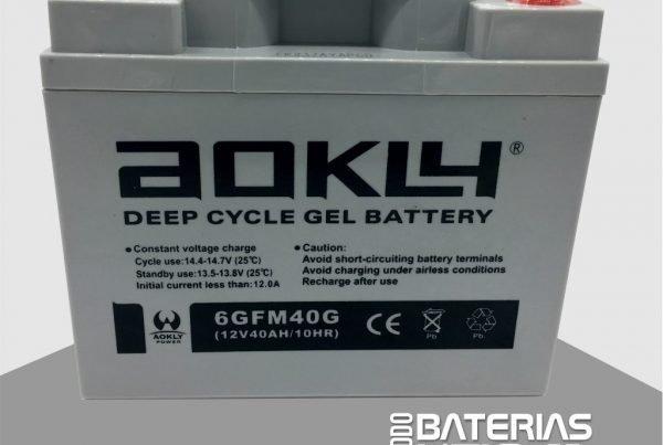 W125G0315 - Batería para barredoras y sillas de ruedas electricas - Todo baterias litio